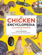 Chicken Encyclopedia av Gail Damerow (Heftet)