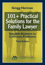 Omslag - 101+ Practical Solutions for the Family Lawyer