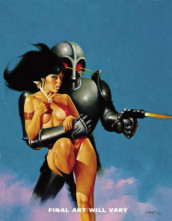 Vampirella Archives Volume 10 av Bill DuBay, Bruce Jones og Roger McKenzie (Innbundet)