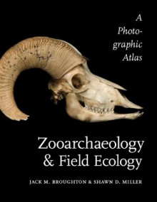 Zooarchaeology and Field Ecology av Jack M. Broughton og Shawn D. Miller (Heftet)