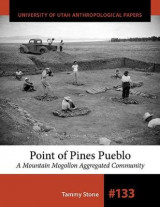 Omslag - Point of Pines Pueblo