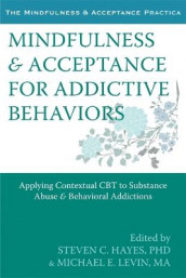 Mindfulness and Acceptance for Addictive Behaviors av Steven C. Hayes (Heftet)