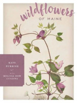 Omslag - Wildflowers of Maine