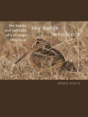 Sky Dance of the Woodcock av Greg Hoch (Heftet)