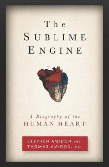 The Sublime Engine av Stephen Amidon og Thomas Amidon (Heftet)