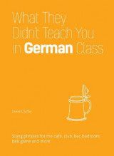 Omslag - What They Didn't Teach You in German Class