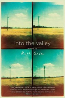 Into The Valley av Ruth Galm (Innbundet)