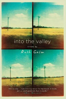 Into the Valley av Ruth Galm (Heftet)