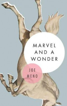 Marvel And A Wonder av Joe Meno (Heftet)
