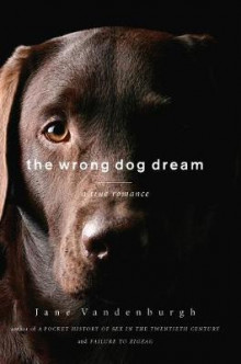 The Wrong Dog Dream av Jane Vandenburgh (Innbundet)