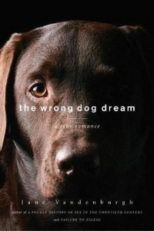 The Wrong Dog Dream av Jane Vandenburgh (Heftet)