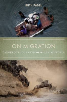 On Migration: Dangerous Journeys and the Living World av Ruth Padel (Heftet)