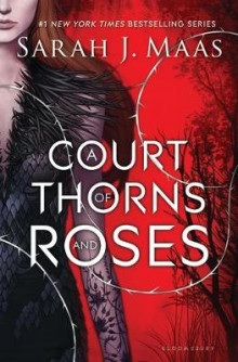 A Court of Thorns and Roses av Sarah J. Maas (Innbundet)