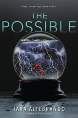 Omslag - The Possible