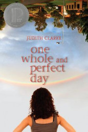 One Whole and Perfect Day av Judith Clarke (Heftet)