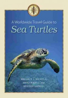 A Worldwide Travel Guide to Sea Turtles av Wallace J. Nichols, Brad Nahill og Melissa Gaskill (Heftet)