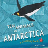 Omslag - Ten Animals in Antarctica