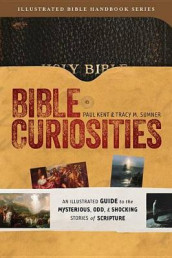 Bible Curiosities av Paul Kent og Tracy M Sumner (Heftet)