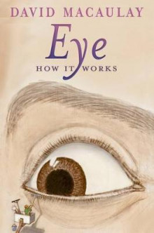 Eye: How It Works av David Macaulay og Sheila Keenan (Heftet)