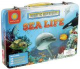 Omslag - Smithsonian Magnetic Adventures: Sea Life