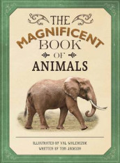 The Magnificent Book of Animals av Tom Jackson (Innbundet)