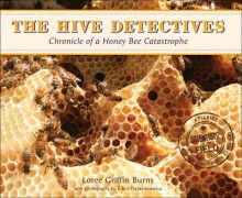 Hive Detectives av Loree Griffin Burns (Innbundet)