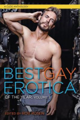 Omslag - Best Gay Erotica of the Year, Volume 3