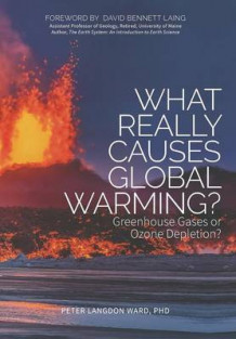What Really Causes Global Warming? av Peter Langdon Ward (Innbundet)