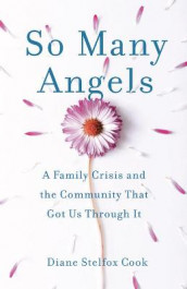 So Many Angels av Diane Stelfox Cook (Heftet)