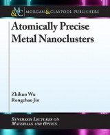 Omslag - Atomically Precise Metal Nanoclusters