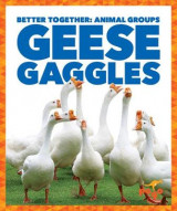 Omslag - Geese Gaggles