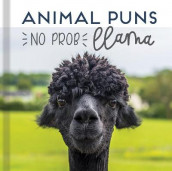 Animal Puns: No Prob Llama av New Seasons og Publications International Ltd (Innbundet)
