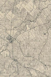 19th Century Map of Dallas County, Texas - A Poetose Notebook / Journal / Diary (50 pages/25 sheets) (Heftet)
