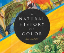 A Natural History of Color av Rob DeSalle og Hans Bachor (Lydbok-CD)