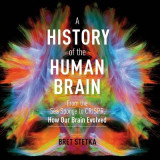 Omslag - A History of the Human Brain