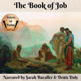 Omslag - The Book of Job