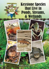 Keystone Species That Live in Ponds, Streams, & Wetlands av Bonnie Hinman (Innbundet)