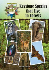 Keystone Species That Live in Forests av Bonnie Hinman (Innbundet)