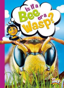 Is It a Bee or a Wasp? av Gail Terp (Innbundet)