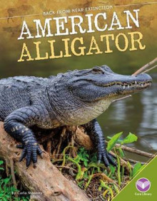 American Alligator av Carla Mooney (Innbundet)