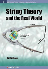 Omslag - String Theory and the Real World