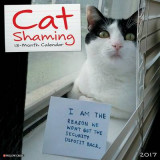 Omslag - Cat Shaming 2017 Wall Calendar