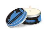 Omslag - Harry Potter Ravenclaw scented tin candle. Large, clove and cedar