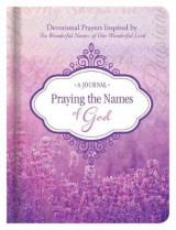 Omslag - Praying the Names of God Journal