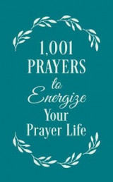 Omslag - 1001 Prayers to Energize Your Prayer Life