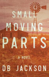 Small Moving Parts av D B Jackson (Innbundet)