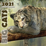 Omslag - Big Cats 2021 Mini Wall Calendar
