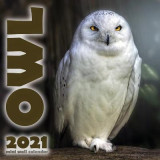Omslag - The Owl 2021 Mini Wall Calendar