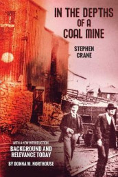In the Depths of a Coal Mine av Stephen Crane og Donna M Northouse (Heftet)