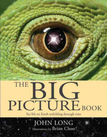 The Big Picture Book av John Long og Brian Choo (Innbundet)
